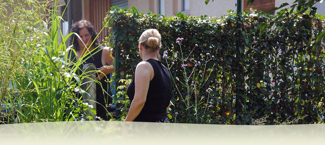 Zaungeschichten stefan zigelli garten und landschaftsbau - Stefan tripp garten und landschaftsbau ...